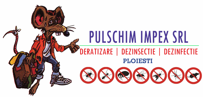 PULSCHIM IMPEX SRL